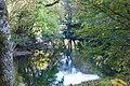 Afon Llugwy - geograph.org.uk - 1540221.jpg