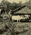Afoot and afloat in Burma (1922) (14595357630).jpg