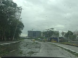 Typhoon Rammasun - Aftermath of Rammasun in Jose Diokno Boulevard
