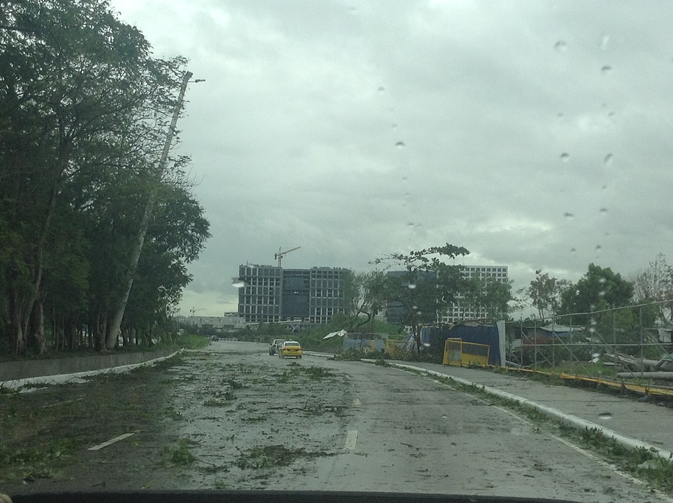 Aftermath of Glenda in Jose W. Diokno Blvd