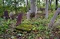 Aizpute jewish cemetery - panoramio.jpg