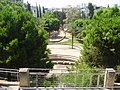 Akiva Gur garden in Bnei Brak.JPG