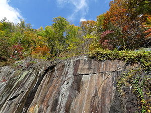 Alapocas Run State Park - Alapocas Run Quarry