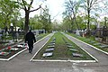 Alley of Fame on the right side from the entrance to Cementery.jpg
