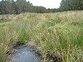 Allt Loch Meadie - geograph.org.uk - 565860.jpg
