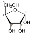 Alpha-D-Ribofuranose numbered.png