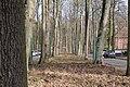 Am Kiebitzberg Kleinmachnow 2021-02-24 01.jpg