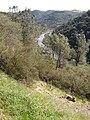American River, Auburn, CA - panoramio - UncleVinny.jpg