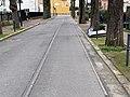 Anciens Rails Tramway St Germain Prés Avenue Verdun - Fontenay-aux-Roses (FR92) - 2021-01-03 - 2.jpg
