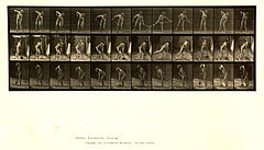 Animal locomotion. Plate 387 (Boston Public Library).jpg