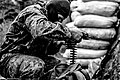 Anti-terrorist operation in eastern Ukraine (War Ukraine) (25577620618).jpg