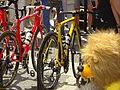 Antwerpen - Tour de France, étape 3, 6 juillet 2015, départ (158).JPG