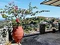 Argiroupoli - panoramio (4).jpg