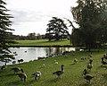 Around Leeds Castle - panoramio.jpg