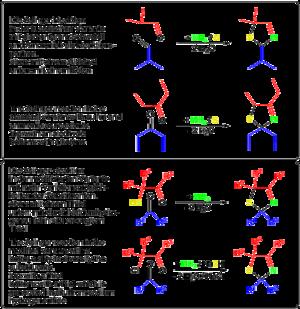 Asinger reaction - Image: Asinger Rkt