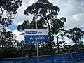 Asquith Station - panoramio.jpg