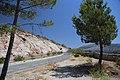 Atajate, 29494, Málaga, Spain - panoramio.jpg