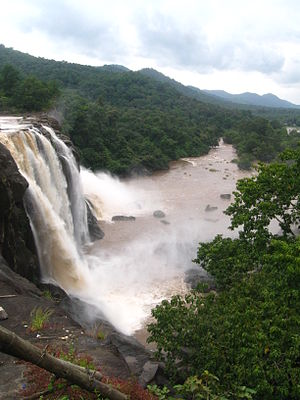 Athirapally Waterfall flooded with water, Tourists entry restricted