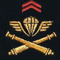 Attribut fourreaux-artillerie parachutiste.png