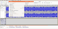 Audacity 4 Add New track.png