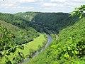 Aussicht auf den Gabelstein unterhalb von Steinsberg.jpg