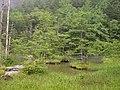 Azumi, Matsumoto, Nagano, Japan - panoramio.jpg