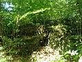 Bürglischloss Gailingen 06.jpg