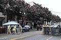 BLM Seattle on June 7, 2020 - 3.jpg
