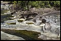 Babinda Boulders North Queensland 3 (12433022304).jpg