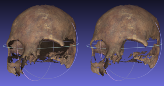 Back-face culling - On the left a model without BFC; on the right the same model with BFC: back-faces are removed.