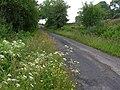 Backglen Road, Ballynaquilly - geograph.org.uk - 1377022.jpg
