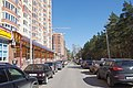 Balashikha, Moscow Oblast, Russia - panoramio (123).jpg