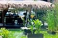 Bali - panoramio (5).jpg