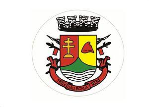 São Borja, Rio Grande do Sul - Image: Bandeira de São Borja