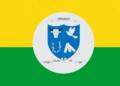 Bandeira de Uruaçu.png