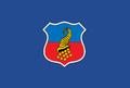 Bandera de Copiapó