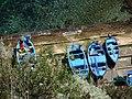 Barche dei pescatori - panoramio.jpg