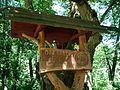 Bartus Oak (2).jpg