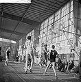 Basketbal Sprinbakken (Nederland) tegen Blue Stars (USA in de Ahoyhal Een van d, Bestanddeelnr 913-3421.jpg
