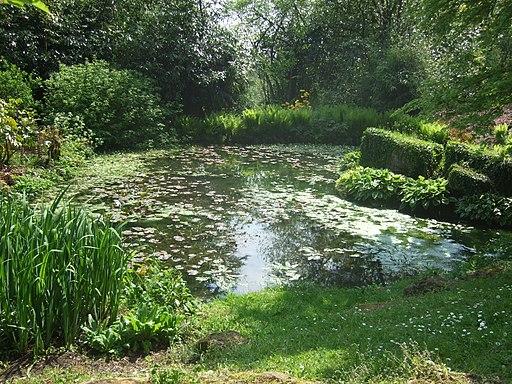 Batsford Arboretum lily pond-7267380244