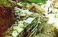 Bau einer Trockenmauer.jpg