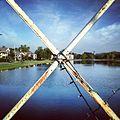 Bayou X.jpg