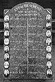 Beaumont plaque resistance 0711.jpg
