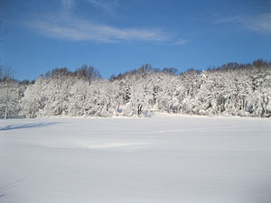 Beaver Valley, Delaware and Pennsylvania - Beaver Valley in white after a winter storm.