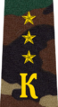 Belarus Military Academy—Internal Troops Department—08 Cadet-Senior Ensign rank insignia (Camouflage).png