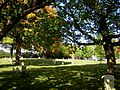 Bennington Street Burying Ground East Boston MA 01.jpg