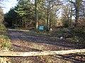 Benyons Enclosure, Ufton Woods - geograph.org.uk - 1083230.jpg