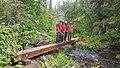 Black Hills National Forest - Social 3.jpg