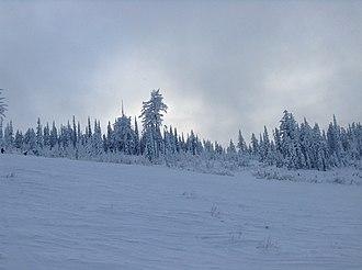 Blacktail Mountain Ski Area - Image: Blacktail coldcamp run