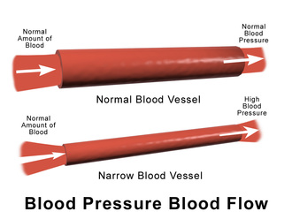 blood pressure and flow relationship